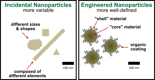 "There are two types of man-made nanoparticles: ""incidental"" (byproducts of other human activities) and engineered (made to order)."