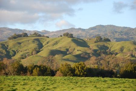 Hills and Valleys - Energy Landscape