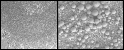 "Images of gel ink at 100x (left) and 1,000x magnification. Acquired using a scanning electron microscope. Reprinted with permission from ""Nanoparticles in Forensic Science"" Cantu, A. SPIE Proceedings, Volume 7119, Forensics and Applications, 2008."