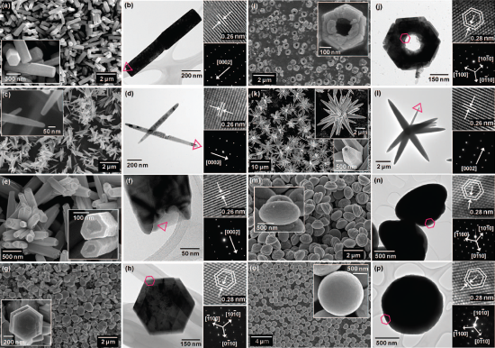 Nanorods (a & b), nanoneedles (c & d), nanocandles (e & f), nanodisks (g & h), nanonuts (i & j), microstars (k & l), microUFOs (m & n), microballs (o & p). Reprinted (adapted) with permission from Morphology-Controlled Growth of ZnO Nanostructures Using Microwave Irradiation: from Basic to Complex Structures, J. Phys. Chem. C. Copyright 2008 American Chemical Society.