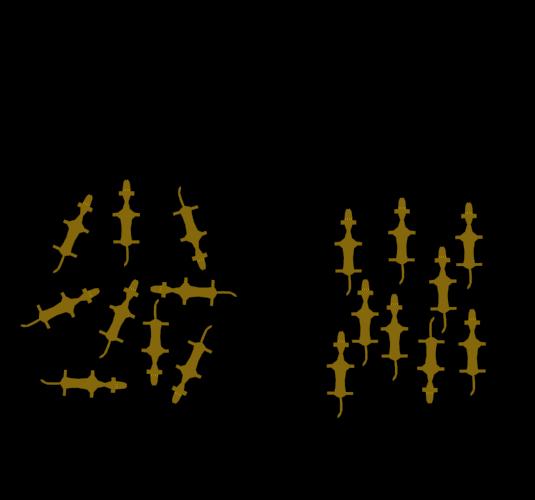 2 - NMR wolf analogy