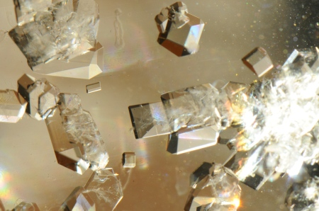 Small crystals of sucrose, many of which appear to be free of defects. Image source