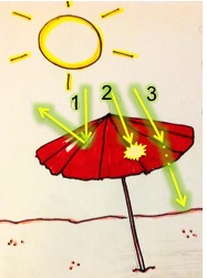 Light can 1.) bounce or reflect off the umbrella, 2.) be absorbed into the umbrella and warm it up, and 3.) pass through (or transmit) through the umbrella.