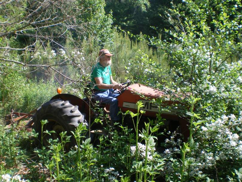Bushhogging - Lowell Byers picture