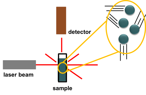 A schematic diagram of a typical dynamic light scattering instrument
