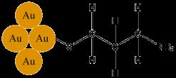 6 gold nanoparticle with mercaptopropylamine bound