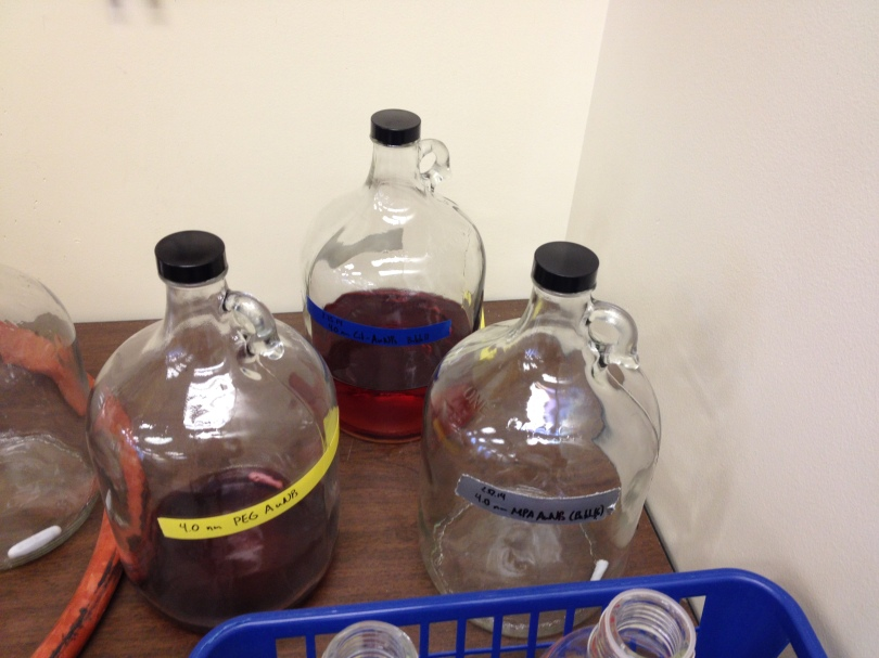 7 - big jars for gold nanoparticle synthesis