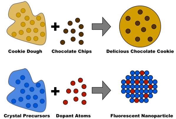 1 - chocolate chip cookies and fluorescent nanoparticles