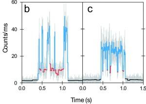 Graph of individual molecule fluctuating intensities