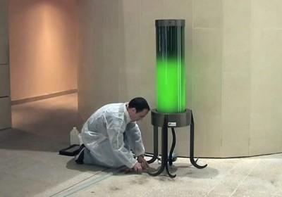 Buchman-GreenmuzeLamp