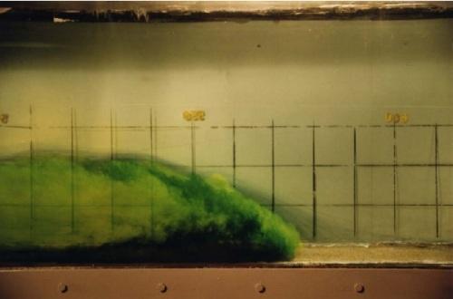 StPatricksDay-Garcia1990-fluorescein
