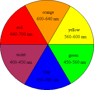 How the fruits got their colors sustainable nano How does the colour wheel work