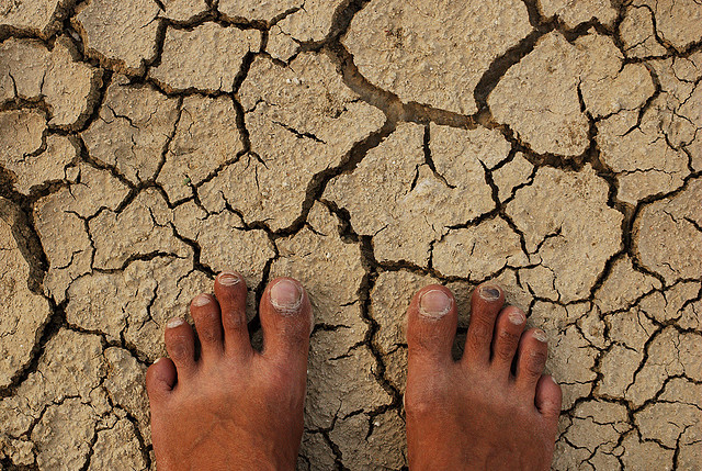 desertification in africa essay Desertification describes the desert-like conditions that exist in regions, often as a cause of human interaction with the environment according to the united.