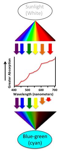 wavelength absorption
