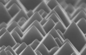 Nature Under a Microscope: Exploring the Beauty ofNanoscience