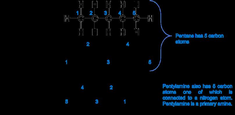 pentylamine.png